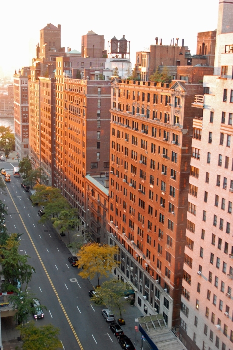 CC-SA 3.0, by Roy Googin http://en.wikipedia.org/wiki/File:East_57th_St_Apartments.jpg
